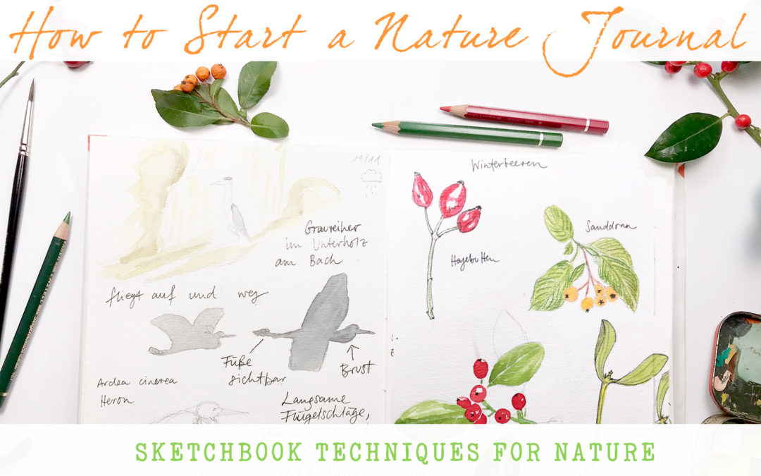 How To Start A Nature Journal – Sketchbook Techniques For Nature – New Class