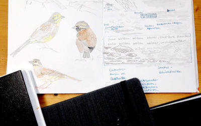Getting Started With Nature Journaling: Choosing a Sketchbook (Part 1)