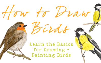 How To Draw Birds – Learn Basic Techniques For Drawing & Painting Birds (New Class)