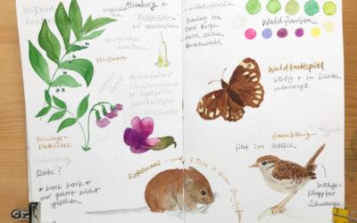 My Sketchbook In April 2019