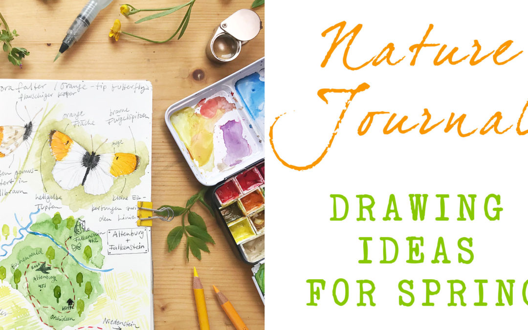 Nature Journaling – Drawing Ideas For Spring